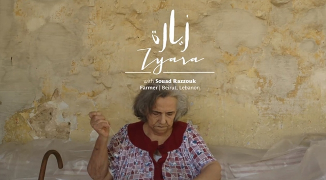 Zyara: True Stories to Change your Perception of the World!
